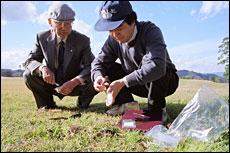 Premio Nobel per la Medicina: vince lo scienziato giapponese Omura con la cura contro le malattie parassitarie