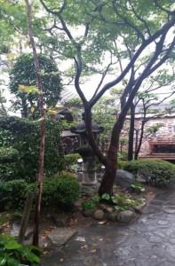 hakata-machiya04