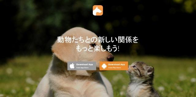 Giappone: amici a 4 zampe a portata di click