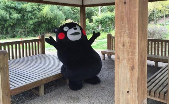 Kumamon, la mascotte di Kumamoto in silenzio dopo terremoto