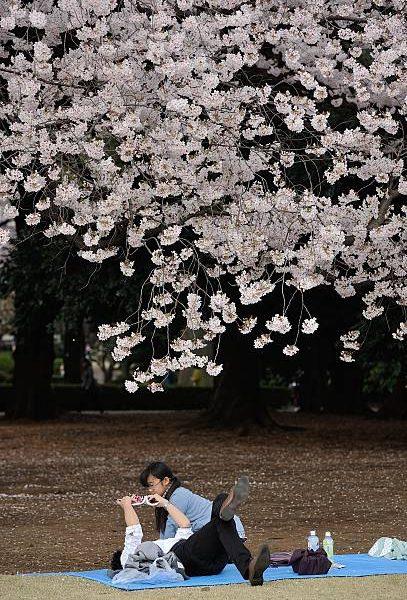 Turisti cinesi al centro delle polemiche in Giappone