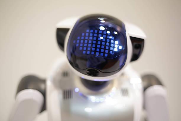 Palro: il robot degli anziani!