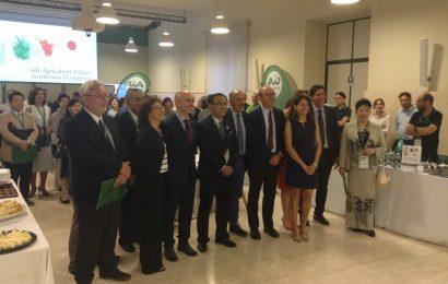 Firmato a Bruxelles l'accordo di libero scambio tra Giappone e Unione Europea