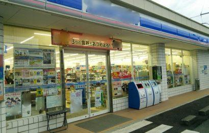 Business e cultura: 6 passi da seguire per avvicinarsi al Giappone