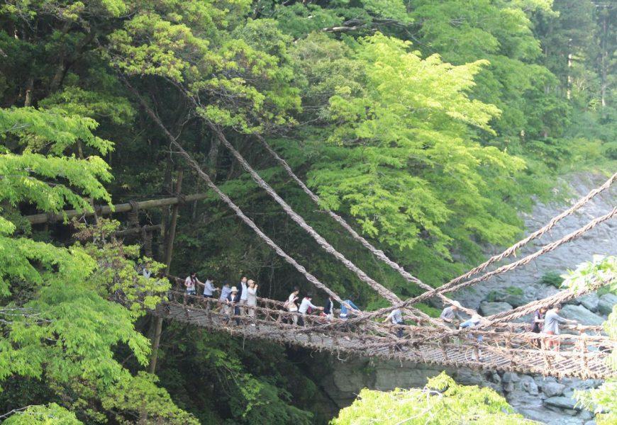 Come essere Indiana Jones in Giappone: Iya Kazurabashi