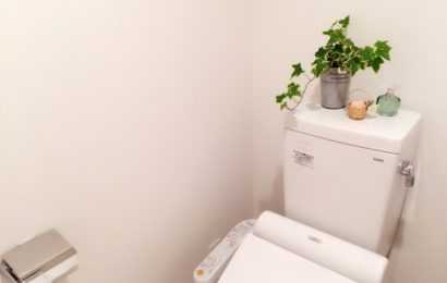 TOTO studia una nuova toilette
